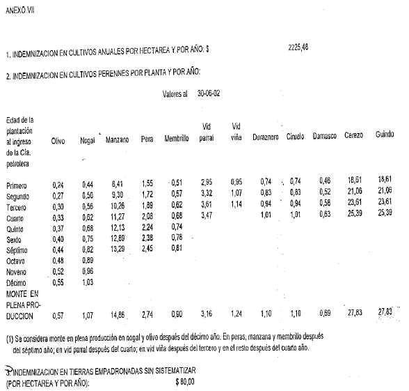dto12-14-1-2005-10.jpg