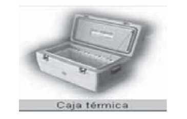 Cajas termicas para transportar alimentos